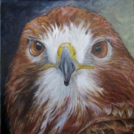 Great Outdoor Weekend - Meet the Artists @ Cincinnati Nature Center, Rowe Woods