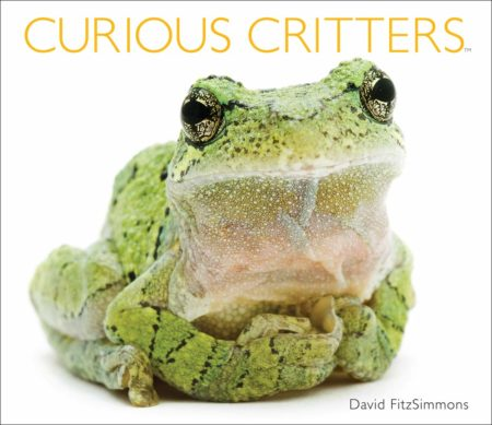 Photography Presentation - Curious Critters: From Portraits to Picture Book @ Cincinnati Nature Center, Rowe Woods