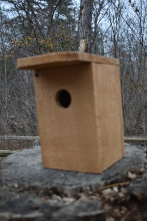 Conservation Starters: Build Your Own Birdhouse for Chickadees or House Wrens