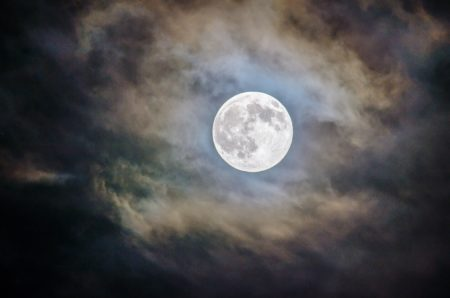 Full Moon Walk: Buffalo Moon at Rowe Woods @ Cincinnati Nature Center, Rowe Woods