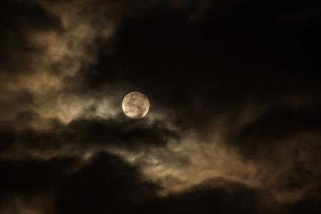Full Moon Walk: Wolf Moon at Rowe Woods @ Cincinnati Nature Center, Rowe Woods