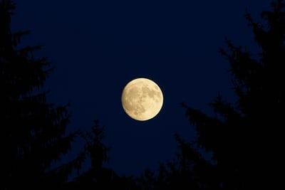 Full Moon Walk: Autumn Harvest Moon at Long Branch Farm & Trails @ Long Branch Farm & Trails