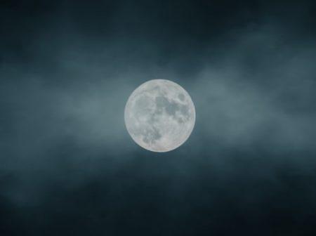 Full Moon Walk: Skunk Moon at Long Branch Farm & Trails @ Long Branch Farm & Trails