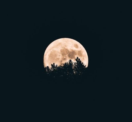 Full Moon Walk: Harvest Moon at Long Branch Farm & Trails @ Long Branch Farm & Trails