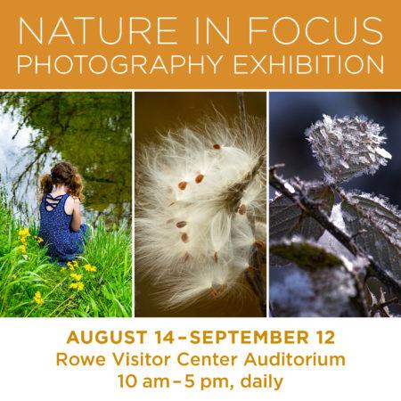 Nature in Focus - Photography Exhibition @ Cincinnati Nature Center, Rowe Woods