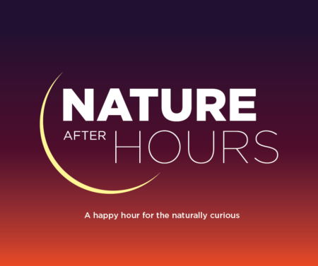Nature After Hours: Living Luggage @ Cincinnat Nature Center, Rowe Woods, Center for Conservation