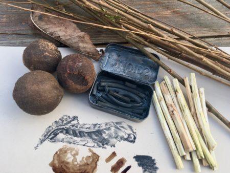 Winter Drawing with Natural Materials @ Cincinnati Nature Center, Rowe Woods
