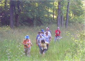 Ohio Certified Volunteer Naturalist Course Summer Days 2020 @ Cincinnati Nature Center, Rowe Woods