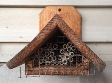 CANCELED: Build a Mason Bee House @ Cincinnati Nature Center, Rowe Woods